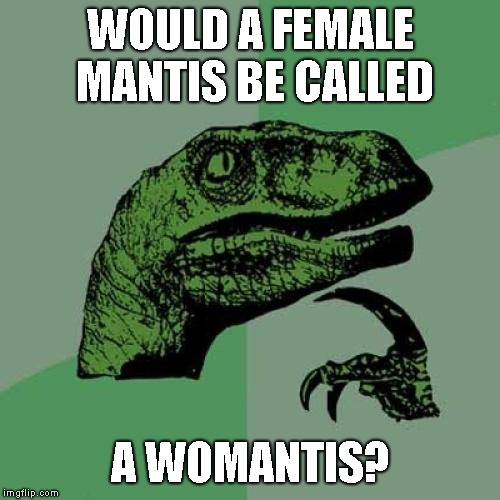 Philosoraptor Meme | WOULD A FEMALE MANTIS BE CALLED A WOMANTIS? | image tagged in memes,philosoraptor | made w/ Imgflip meme maker