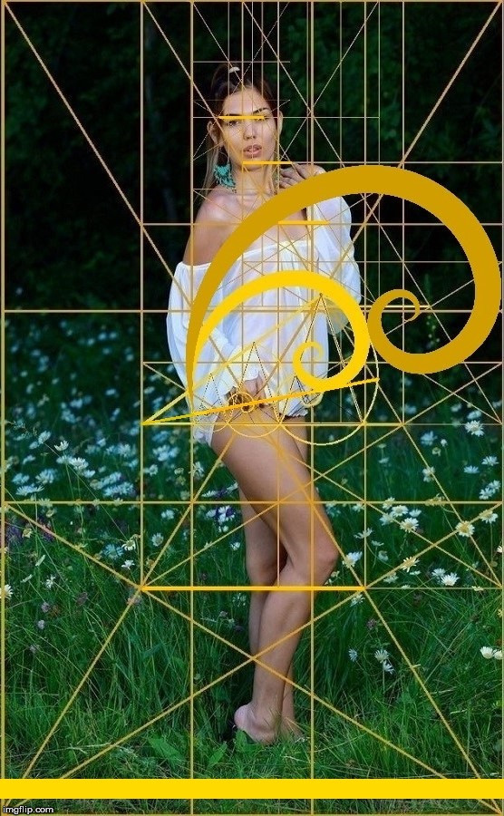 When a picture says 1,618 words. | image tagged in the golden ratio,woman,sexy,geometry,the human body,life | made w/ Imgflip meme maker