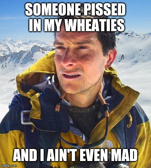 Bear Grylls |  SOMEONE PISSED IN MY WHEATIES; AND I AIN'T EVEN MAD | image tagged in memes,bear grylls | made w/ Imgflip meme maker
