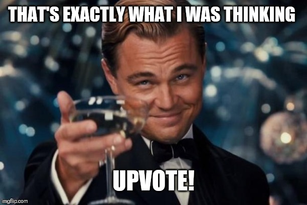 Leonardo Dicaprio Cheers Meme | THAT'S EXACTLY WHAT I WAS THINKING UPVOTE! | image tagged in memes,leonardo dicaprio cheers | made w/ Imgflip meme maker