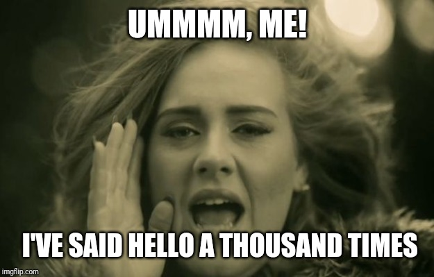 adele hello | UMMMM, ME! I'VE SAID HELLO A THOUSAND TIMES | image tagged in adele hello | made w/ Imgflip meme maker