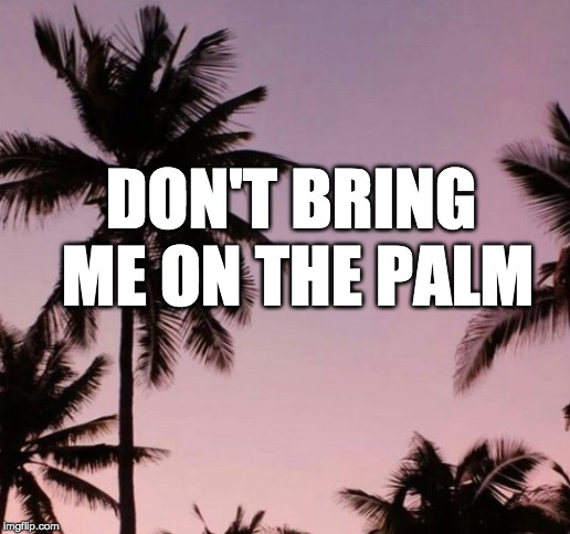DON'T BRING ME ON THE PALM | made w/ Imgflip meme maker