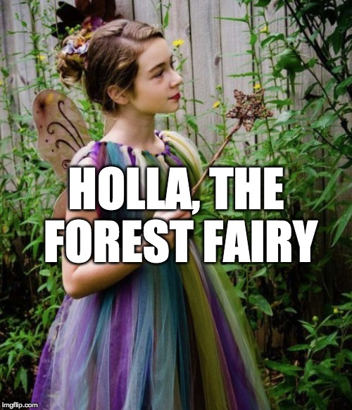 HOLLA, THE FOREST FAIRY | made w/ Imgflip meme maker