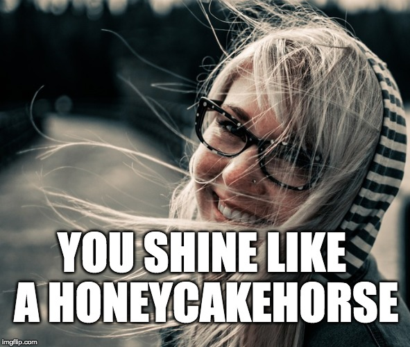 YOU SHINE LIKE A HONEYCAKEHORSE | made w/ Imgflip meme maker