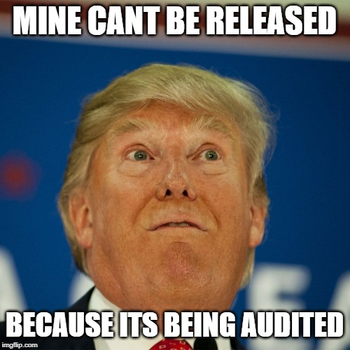 MINE CANT BE RELEASED BECAUSE ITS BEING AUDITED | made w/ Imgflip meme maker