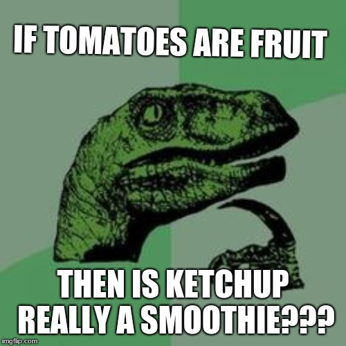 Time raptor  | IF TOMATOES ARE FRUIT THEN IS KETCHUP REALLY A SMOOTHIE??? | image tagged in time raptor | made w/ Imgflip meme maker