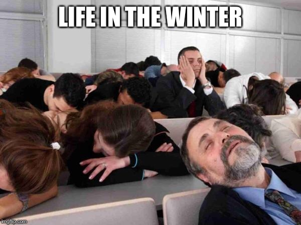 BORING | LIFE IN THE WINTER | image tagged in boring | made w/ Imgflip meme maker