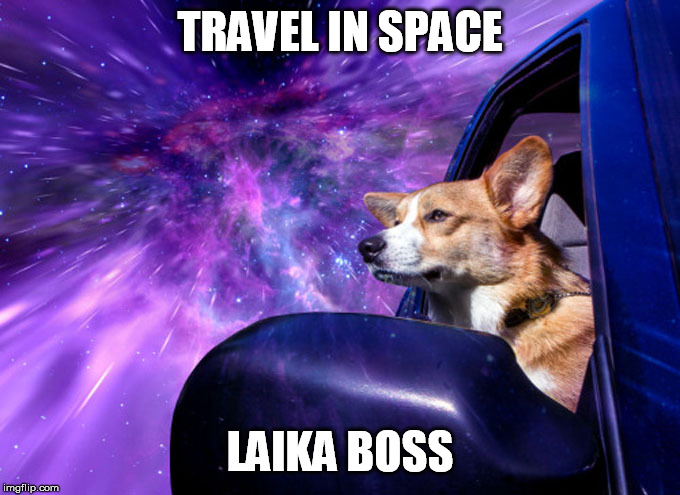TRAVEL IN SPACE LAIKA BOSS | made w/ Imgflip meme maker