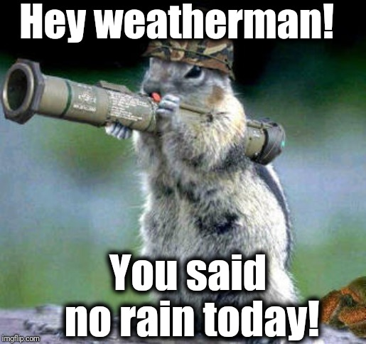 You lying son of a ... !! | Hey weatherman! You said no rain today! | image tagged in memes,bazooka squirrel | made w/ Imgflip meme maker