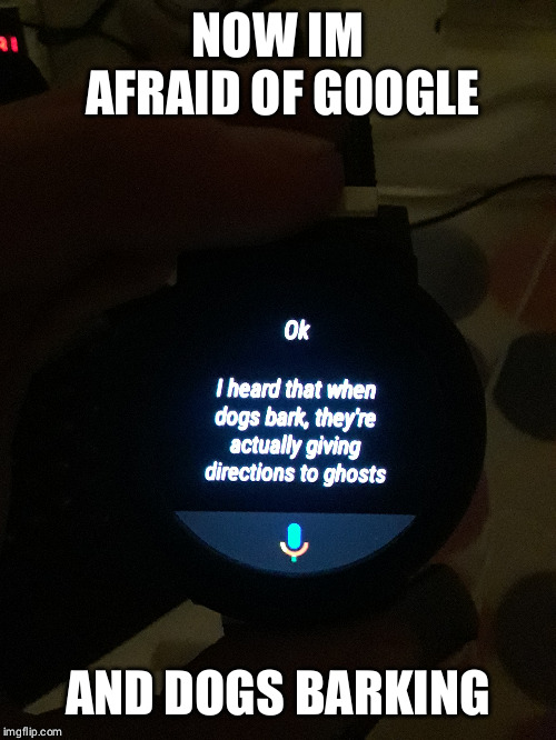 Why Google...WHY | NOW IM AFRAID OF GOOGLE AND DOGS BARKING | image tagged in google,google assistant,dogs,barking,ghosts,scary | made w/ Imgflip meme maker
