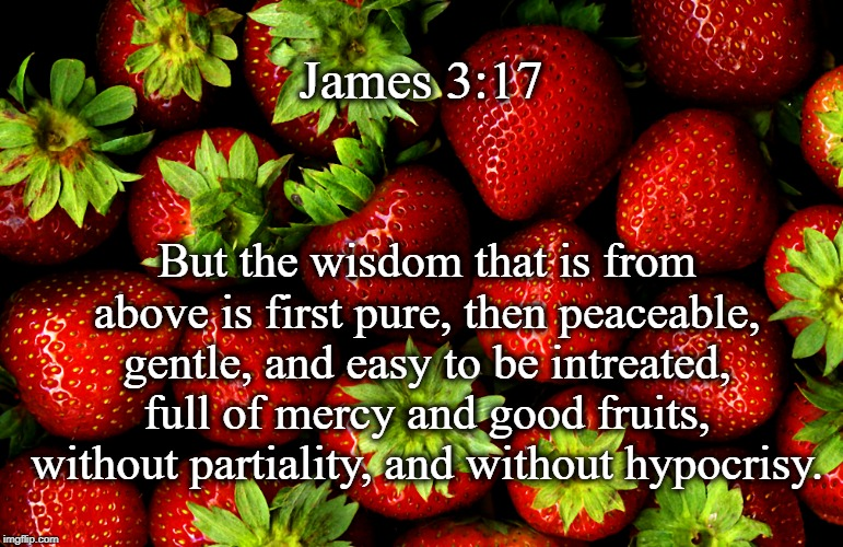 James 3:17; But the wisdom that is from above is first pure, then peaceable, gentle, and easy to be intreated, full of mercy and good fruits, without partiality, and without hypocrisy. | image tagged in strawberries | made w/ Imgflip meme maker