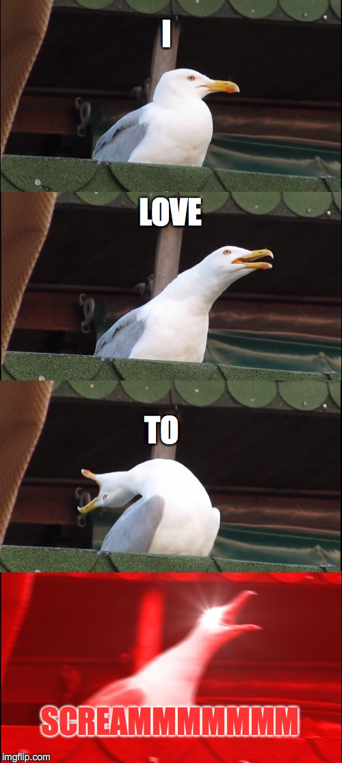Inhaling Seagull Meme | I LOVE TO SCREAMMMMMMM | image tagged in memes,inhaling seagull | made w/ Imgflip meme maker