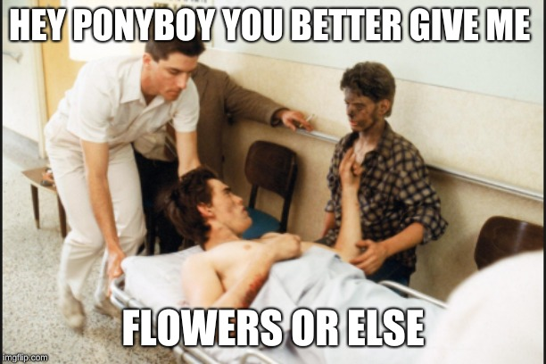 HEY PONYBOY YOU BETTER GIVE ME FLOWERS OR ELSE | image tagged in funny meme | made w/ Imgflip meme maker