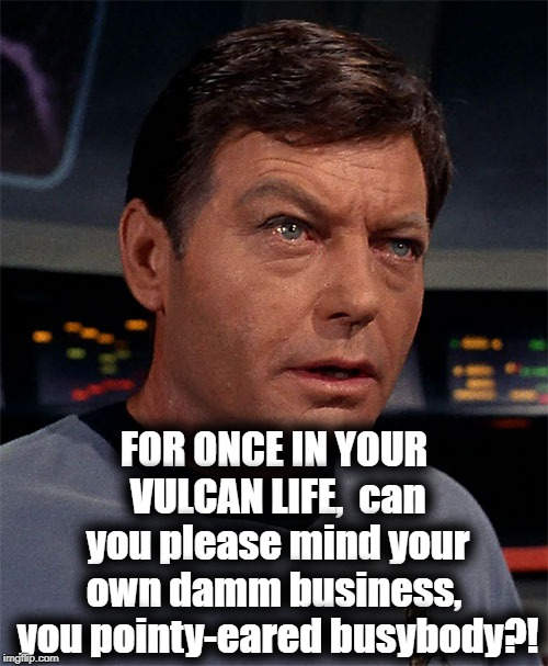 FOR ONCE IN YOUR VULCAN LIFE,  can you please mind your own damm business,  you pointy-eared busybody?! | made w/ Imgflip meme maker