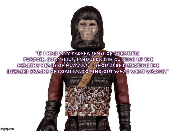 "Gorillas 2 | ""If I had any proper sense of scientific purpose, Cornelius, I shouldn't be cutting up the healthy heads of humans.  I should be dissecting  