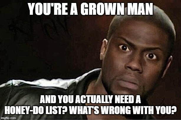 Kevin doesn't need a honey-do list. | YOU'RE A GROWN MAN AND YOU ACTUALLY NEED A HONEY-DO LIST? WHAT'S WRONG WITH YOU? | image tagged in memes,kevin hart,men,grown man,do your job,get it | made w/ Imgflip meme maker