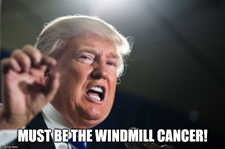 donald trump | MUST BE THE WINDMILL CANCER! | image tagged in donald trump | made w/ Imgflip meme maker