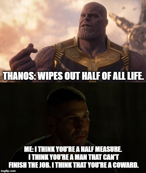 Half-Measure | THANOS: WIPES OUT HALF OF ALL LIFE. ME: I THINK YOU'RE A HALF MEASURE. I THINK YOU'RE A MAN THAT CAN'T FINISH THE JOB. I THINK THAT YOU'RE A | image tagged in marvel,thanos,punisher | made w/ Imgflip meme maker
