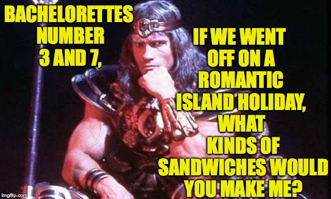 Conan | BACHELORETTES NUMBER 3 AND 7, WHAT KINDS OF SANDWICHES WOULD YOU MAKE ME? IF WE WENT OFF ON A ROMANTIC ISLAND HOLIDAY, | image tagged in conan | made w/ Imgflip meme maker