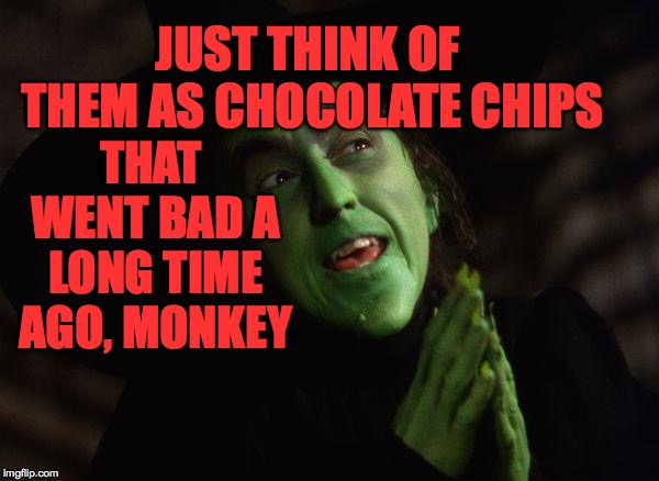Wicked Witch West | JUST THINK OF THEM AS CHOCOLATE CHIPS THAT WENT BAD A LONG TIME AGO, MONKEY | image tagged in wicked witch west | made w/ Imgflip meme maker