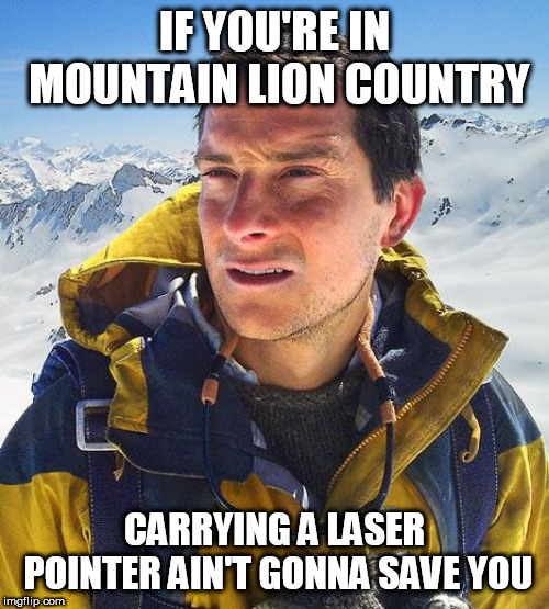 Bear Grylls |  IF YOU'RE IN MOUNTAIN LION COUNTRY; CARRYING A LASER POINTER AIN'T GONNA SAVE YOU | image tagged in memes,bear grylls | made w/ Imgflip meme maker