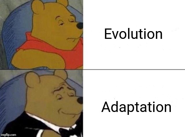 Tuxedo winnie the pooh | Evolution Adaptation | image tagged in tuxedo winnie the pooh | made w/ Imgflip meme maker
