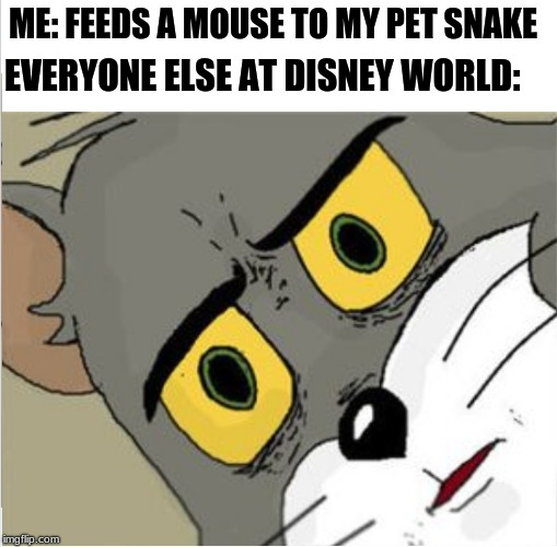 ME: FEEDS A MOUSE TO MY PET SNAKE EVERYONE ELSE AT DISNEY WORLD: | image tagged in usettled tom 20 | made w/ Imgflip meme maker