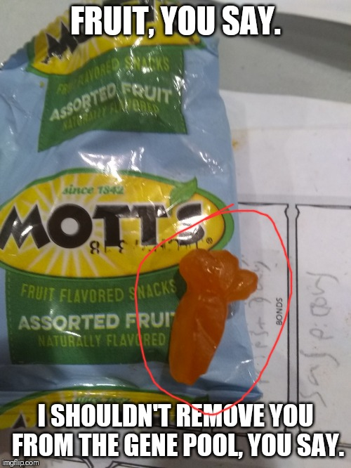 Carrot in a Mott's | FRUIT, YOU SAY. I SHOULDN'T REMOVE YOU FROM THE GENE POOL, YOU SAY. | image tagged in fruit you say | made w/ Imgflip meme maker