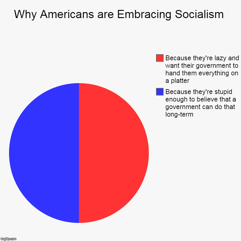 Pie Charts are Fun | Why Americans are Embracing Socialism | Because they're stupid enough to believe that a government can do that long-term, Because they're la | image tagged in charts,pie charts,memes,politics,socialism,pie charts are fun | made w/ Imgflip chart maker