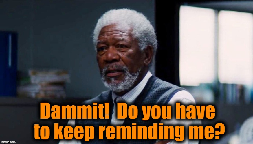 Dammit!  Do you have to keep reminding me? | made w/ Imgflip meme maker
