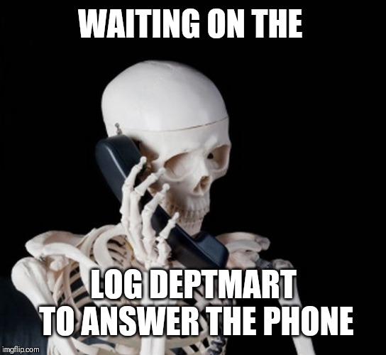 Skeleton on phone |  WAITING ON THE; LOG DEPTMART TO ANSWER THE PHONE | image tagged in skeleton on phone | made w/ Imgflip meme maker