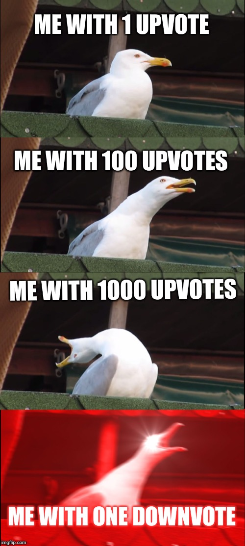 Inhaling Seagull Meme | ME WITH 1 UPVOTE ME WITH 100 UPVOTES ME WITH 1000 UPVOTES ME WITH ONE DOWNVOTE | image tagged in memes,inhaling seagull | made w/ Imgflip meme maker