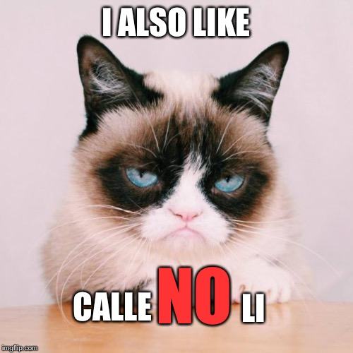 grumpy cat again | I ALSO LIKE CALLE NO LI | image tagged in grumpy cat again | made w/ Imgflip meme maker
