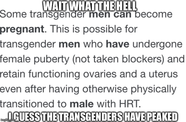 The transgenders have peaked! | WAIT WHAT THE HELL I GUESS THE TRANSGENDERS HAVE PEAKED | image tagged in transgender,peaked,yeet,pregnant,man | made w/ Imgflip meme maker