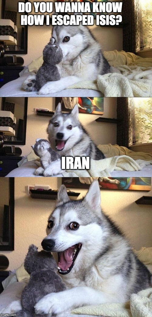 fight of flight? | DO YOU WANNA KNOW HOW I ESCAPED ISIS? IRAN | image tagged in memes,bad pun dog | made w/ Imgflip meme maker