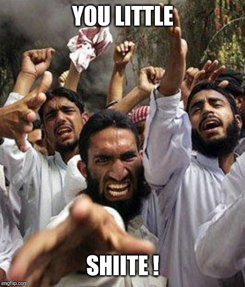 angry muslim | YOU LITTLE SHIITE ! | image tagged in angry muslim | made w/ Imgflip meme maker