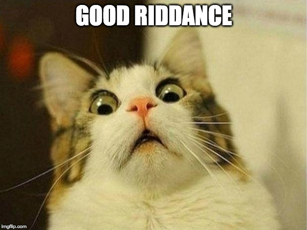 Scared Cat Meme | GOOD RIDDANCE | image tagged in memes,scared cat | made w/ Imgflip meme maker