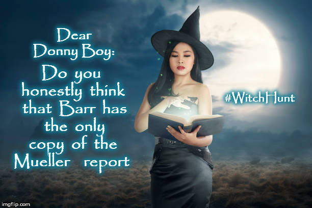Mueller Report | Dear Donny Boy: Do  you  honestly  think  that  Barr  has  the  only  copy  of  the  Mueller    report #WitchHunt | image tagged in witch hunt,mueller report,mega,donald trump,bill barr,corruption | made w/ Imgflip meme maker