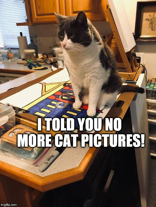 The Art Critic |  I TOLD YOU NO MORE CAT PICTURES! | image tagged in the art critic,funny cat memes | made w/ Imgflip meme maker