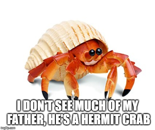 Hermit Crab | I DON'T SEE MUCH OF MY FATHER, HE'S A HERMIT CRAB | image tagged in hermit crab | made w/ Imgflip meme maker