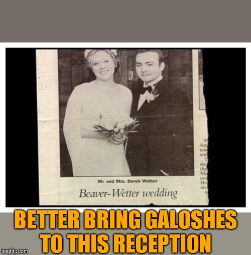 Moist reception | BETTER BRING GALOSHES TO THIS RECEPTION | image tagged in funny beaver,funny names,funny wedding | made w/ Imgflip meme maker