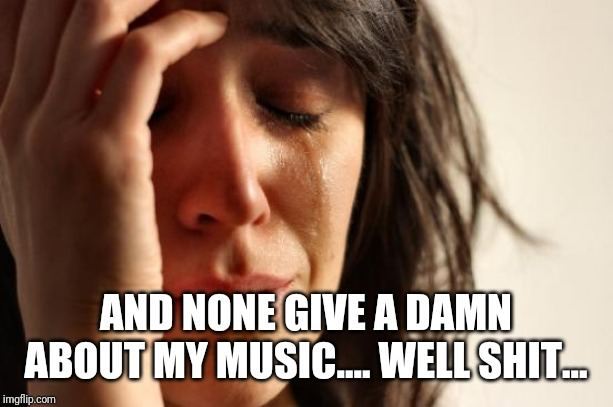 First World Problems Meme | AND NONE GIVE A DAMN ABOUT MY MUSIC.... WELL SHIT... | image tagged in memes,first world problems | made w/ Imgflip meme maker