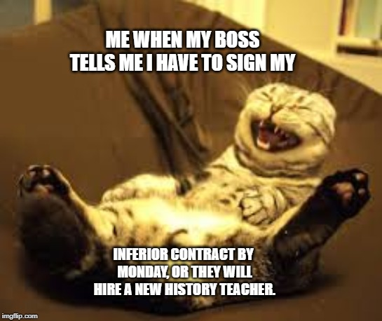 Silly boss | ME WHEN MY BOSS TELLS ME I HAVE TO SIGN MY INFERIOR CONTRACT BY MONDAY, OR THEY WILL HIRE A NEW HISTORY TEACHER. | image tagged in boss,laughing,cat | made w/ Imgflip meme maker