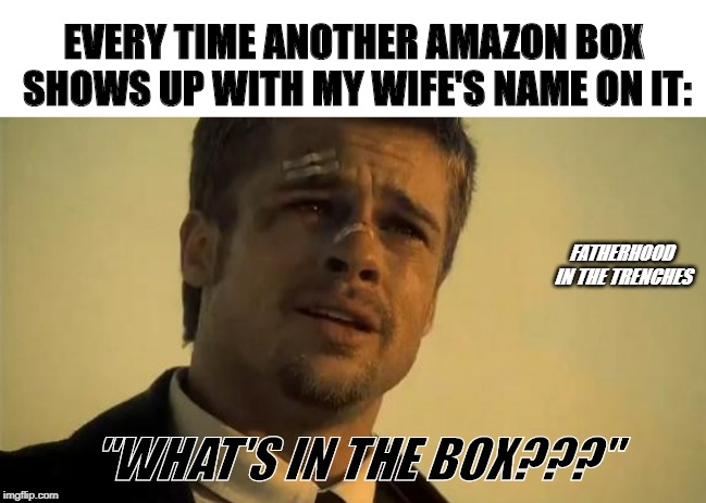 "What's In the (Amazon) Box??? | EVERY TIME ANOTHER AMAZON BOX SHOWS UP WITH MY WIFE'S NAME ON IT: ""WHAT'S IN THE BOX???"" FATHERHOOD IN THE TRENCHES 