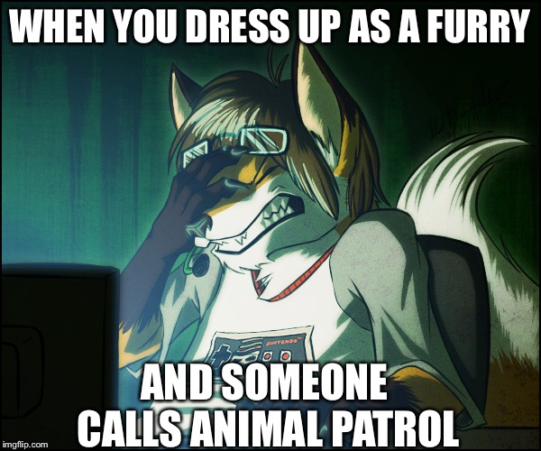 Furry facepalm | WHEN YOU DRESS UP AS A FURRY AND SOMEONE CALLS ANIMAL PATROL | image tagged in furry facepalm | made w/ Imgflip meme maker