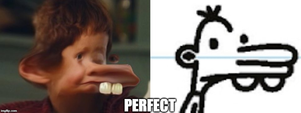 Book Accurate Manny | PERFECT | image tagged in diary of a wimpy kid | made w/ Imgflip meme maker