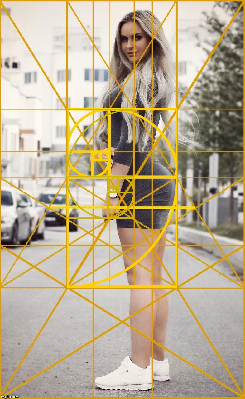 A beautiful woman with The Golden Ratio. | image tagged in the golden ratio,woman,beauty,geometry,life,photography | made w/ Imgflip meme maker