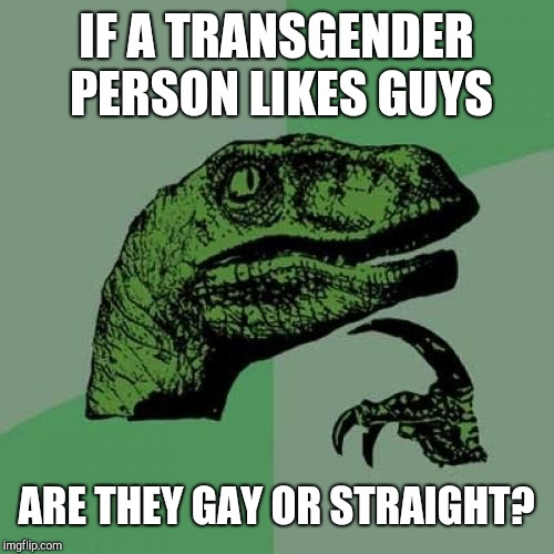Philosoraptor Meme | IF A TRANSGENDER PERSON LIKES GUYS ARE THEY GAY OR STRAIGHT? | image tagged in memes,philosoraptor | made w/ Imgflip meme maker