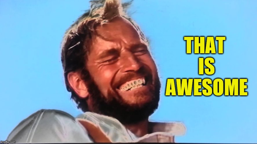 Charlton Heston Planet of the Apes Laugh | THAT IS AWESOME | image tagged in charlton heston planet of the apes laugh | made w/ Imgflip meme maker