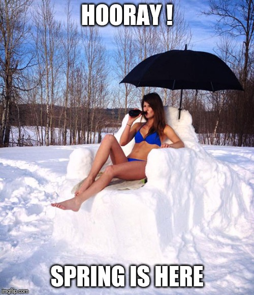 Sun bathing | HOORAY ! SPRING IS HERE | image tagged in sun bathing | made w/ Imgflip meme maker